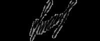 света-подпись